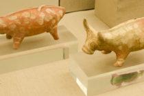 Οι προϊστορικοί Έλληνες προτιμούσαν το κρέας παρά το γάλα