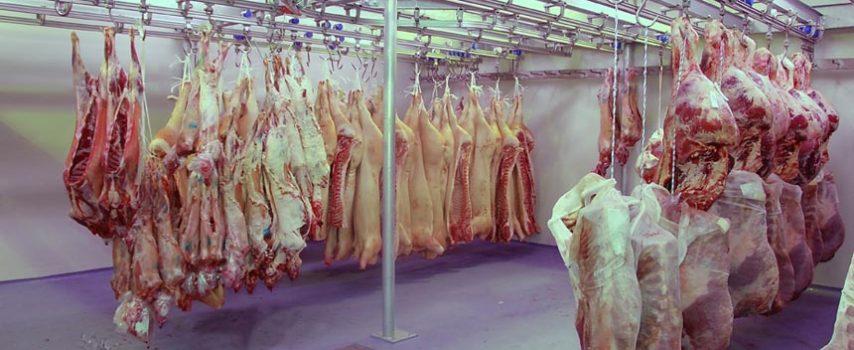 Εντατικοποίηση των ελέγχων στη χονδρική πώληση τροφίμων προαναγγέλλει η Γ.Γ. Εμπορίου