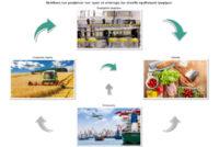 Η Eurostat μετράει πώς μεταδίδονται οι μεταβολές στην τιμή του κρέατος από τον κτηνοτρόφο μέχρι τον καταναλωτή