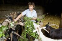Επιβεβαίωση της συμφωνίας Ε.Ε.-Χιλής για τα βιολογικά – Ποια προϊόντα αφορά